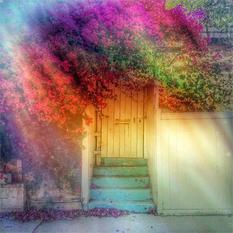 Rainbow Door - 4x4 Fine Art Mini Print by Christina Thomas - unframed - Unlimited Edition