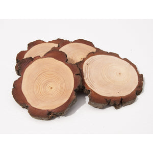 10 - 12 cm Wood slices (10 pack) - Small Wood Slices