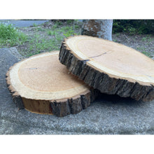Load image into Gallery viewer, 30 - 36 cm Thick Wood Slice (5 cm) - Large wood slices