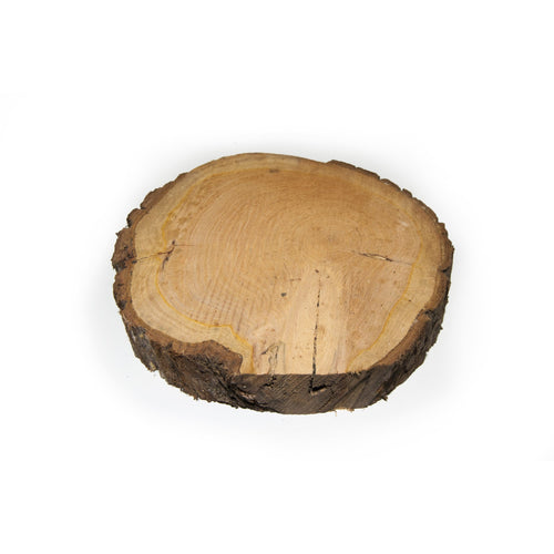 30 - 38 cm Thick Wood Slice (5 cm) - SECONDS - Large wood slices