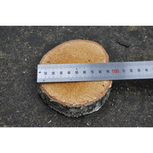 Load image into Gallery viewer, 5 pack | Silver Birch (3 - 5/7.5 - 12.5 cm) - 2.5 cm (1) thick - Large wood slices