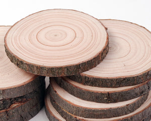 8 - 10 cm Wood slices (10 pack)