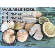 Load image into Gallery viewer, Large Wood Slice Seconds (10 Pack) - Large Wood Slices