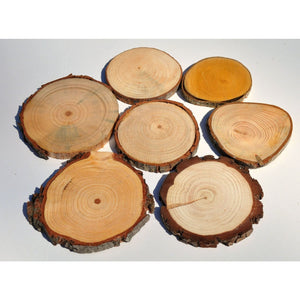 Wood Slice Seconds (100 Pack) - Small Wood Slices