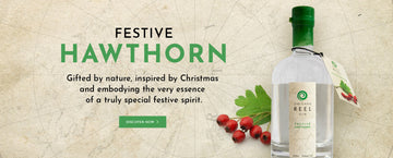 Hawthorn Festive Gin - Available Now!