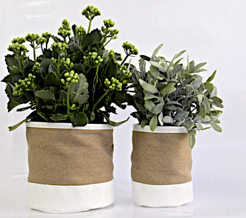 Plant Bags Canvas and white