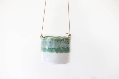 Ombre Fern Medium Hanging Pot