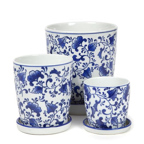 Blue and White Pots Flower