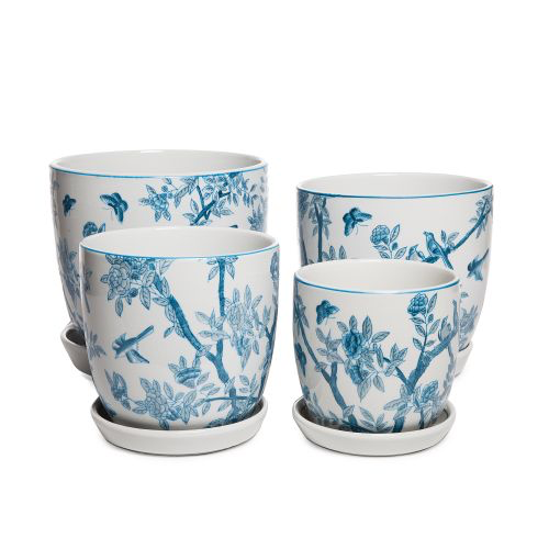 Tulip  Pot with Saucer Blue Flowers