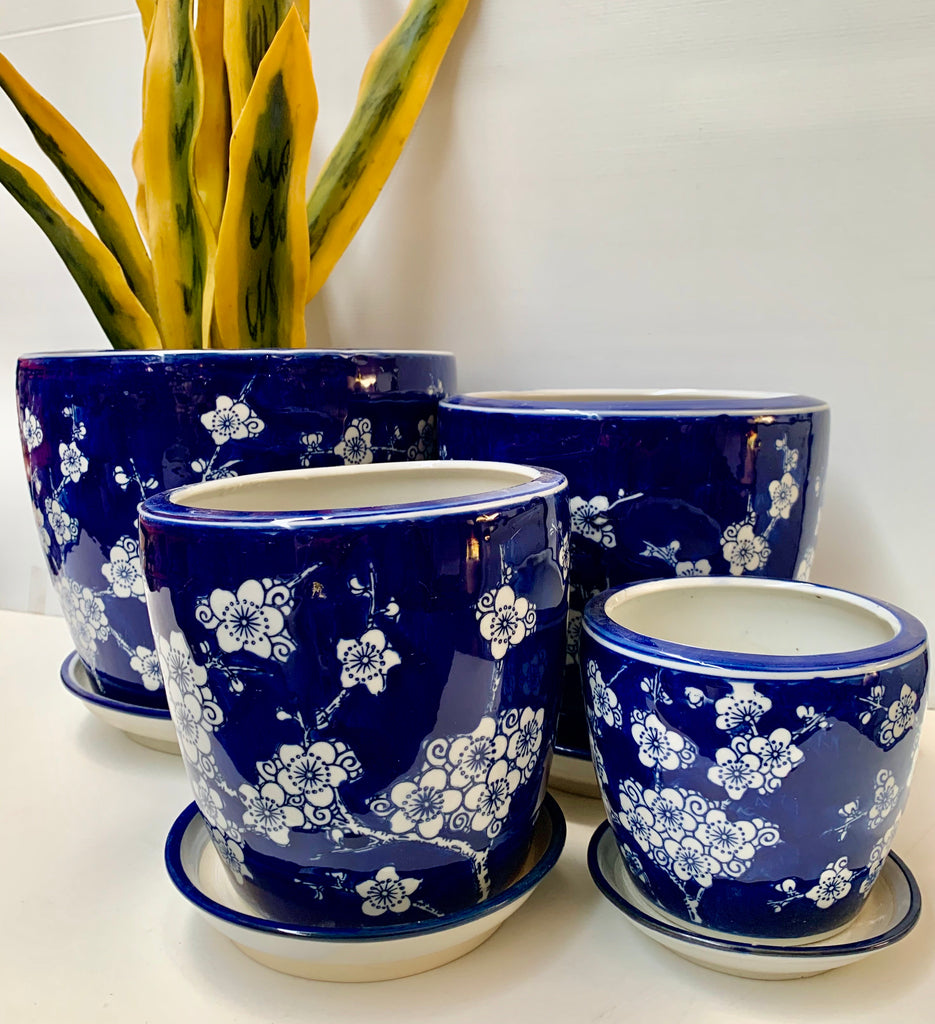 Round Pots With Saucer - Blossom