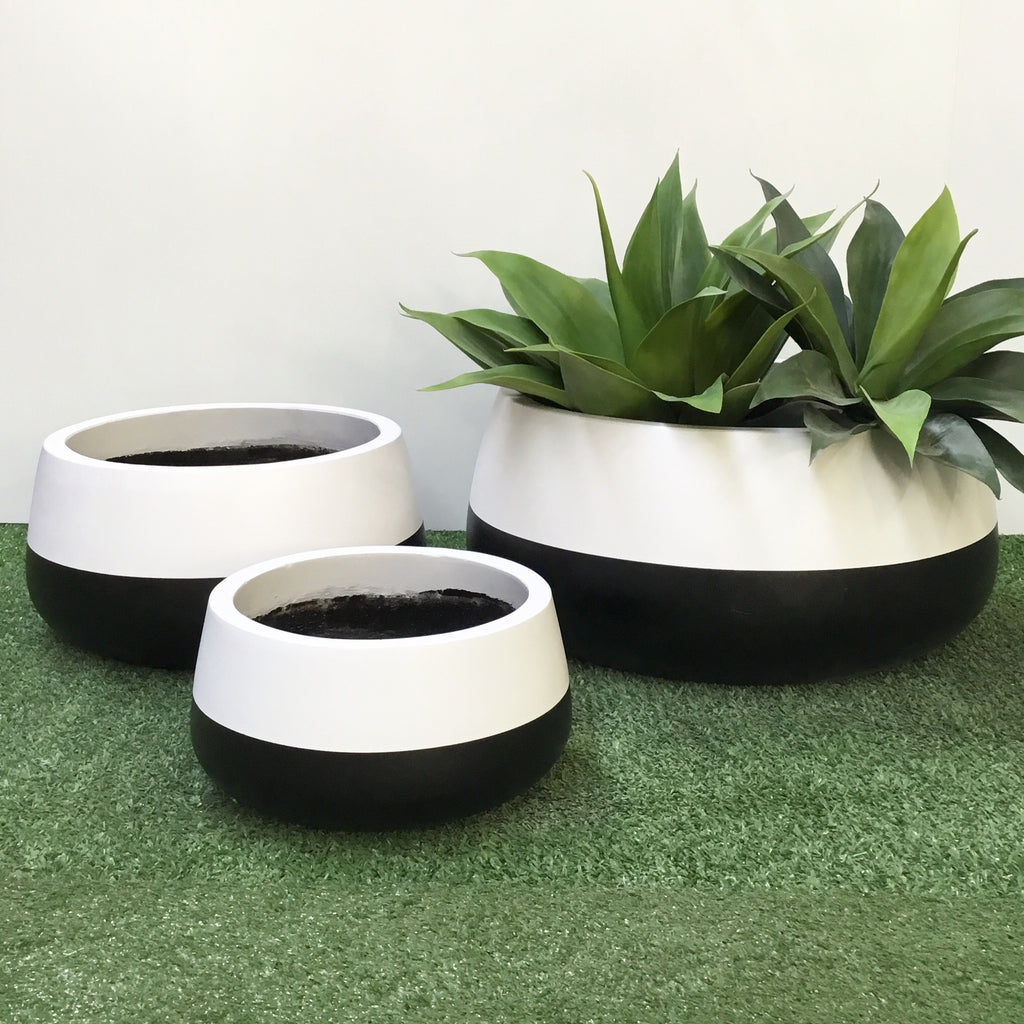 Shallow Planter White and Black