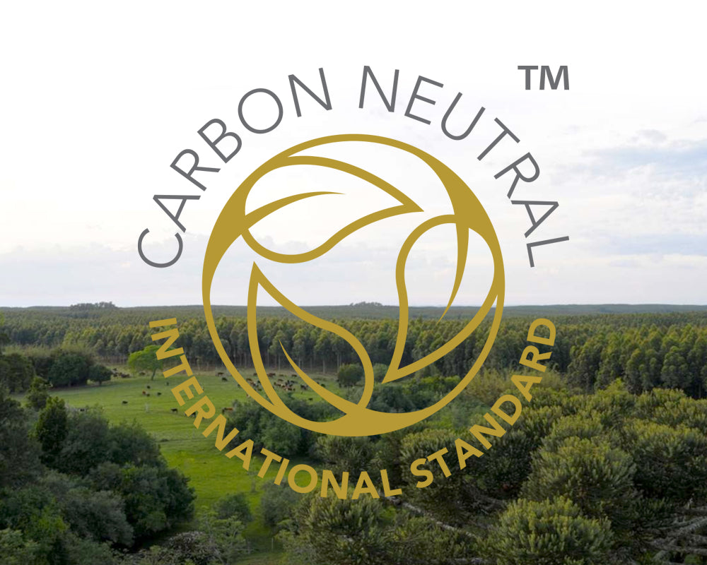 We're Officially Carbon Neutral!