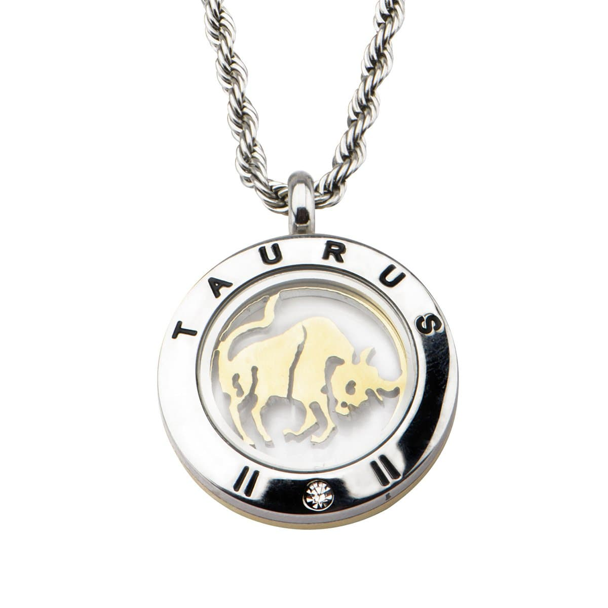 4-in-1 Dual Tone Stainless Steel Mix & Match Taurus Pendant & Chain Pendants