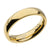Gold Stainless Steel Polished 4mm Band