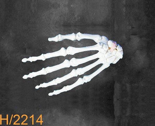 Hand Large Left . H2214