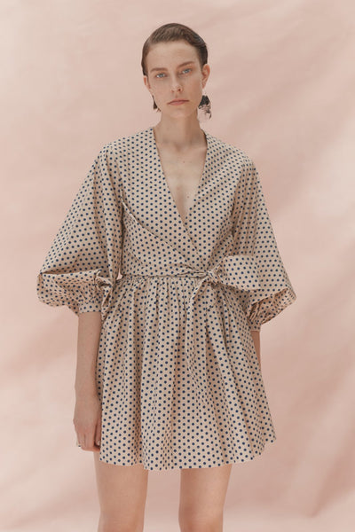 Payton Polka Dot Dress