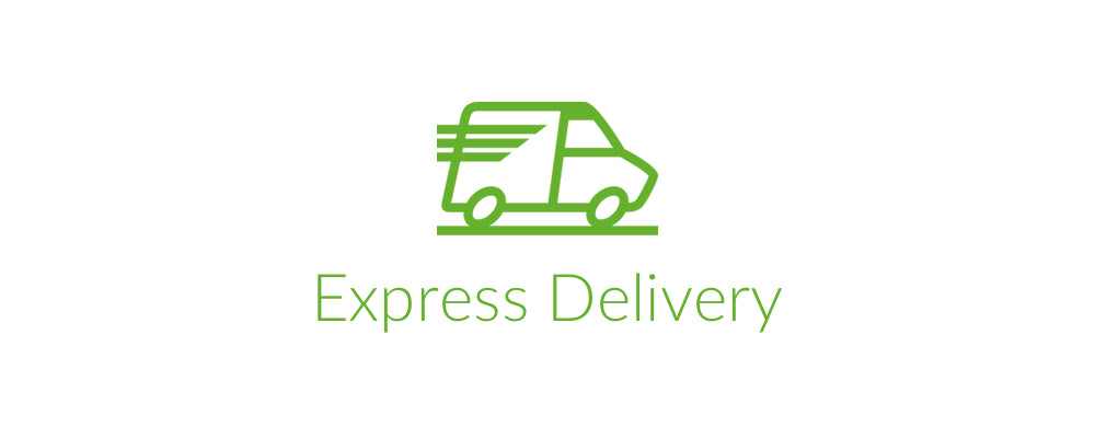 Introducing Express Delivery