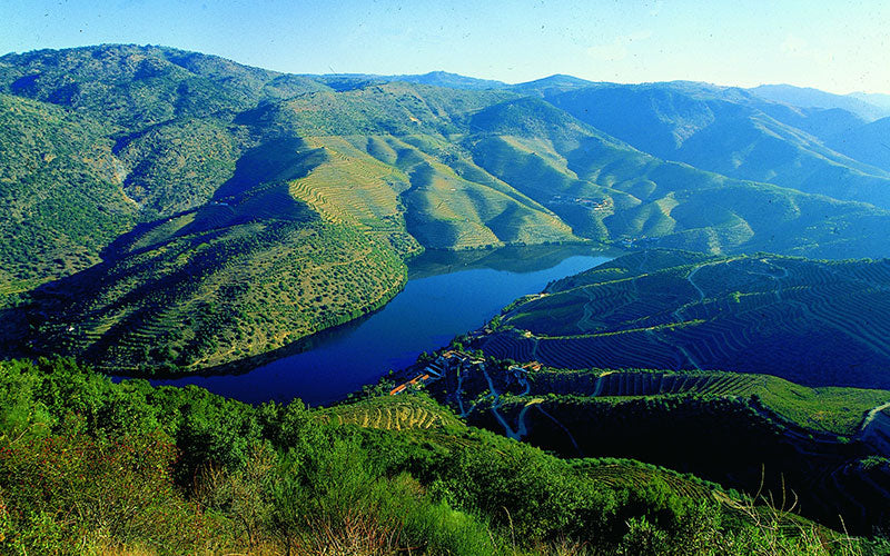The-Douro-Valley-Portugal-Port