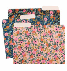EVERYDAY ASSORTED FILE FOLDERS Rosa