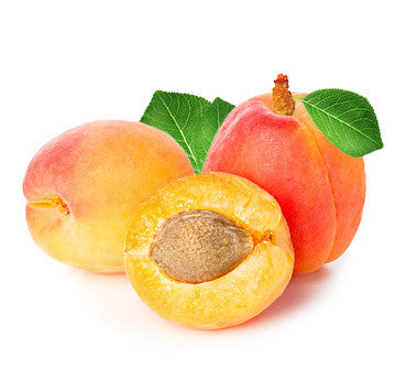 Apricot Kernel Carrier Oil - Refined