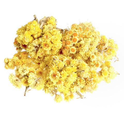 Helichrysum 3% Dilution