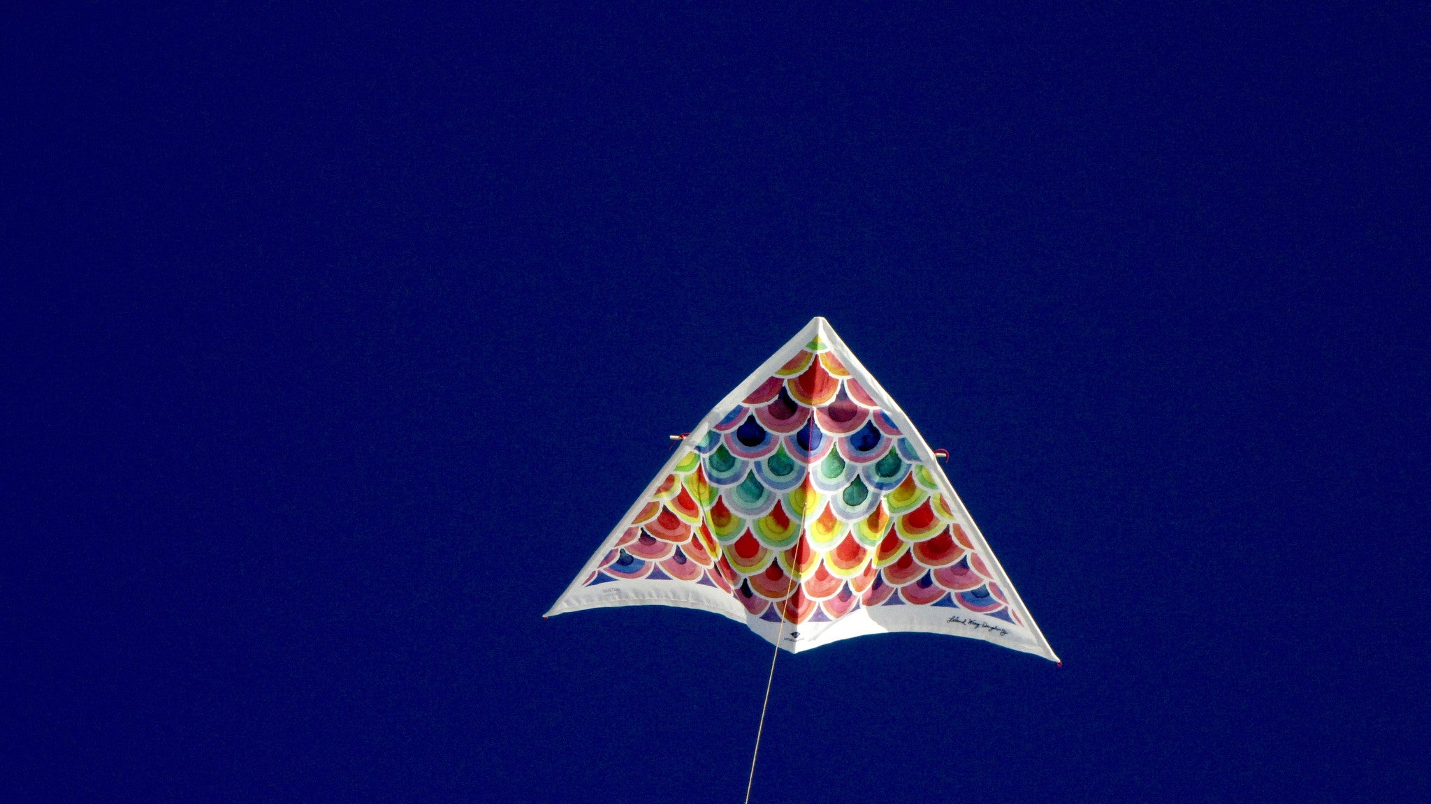 5 Surprising Ways a Kite Can Change Your Life