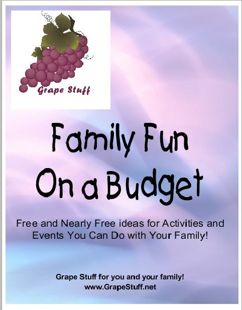 Family Fun on a Budget Cover