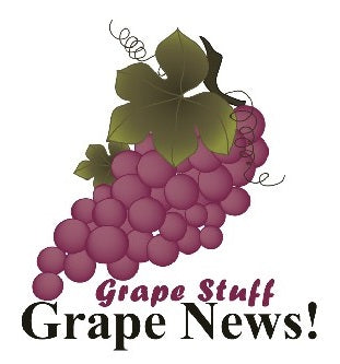 Grape News Logo