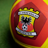 12 Panel Go Ahead Eagles voetbal