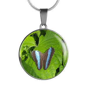 Necklaces butterfly multi color with Gift Box-GKandaa.net