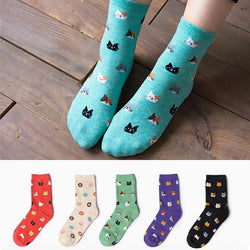 Fashion Women New Lovely Cat Socks Animal Cartoon Girl Boy Casual Cotton Socks 5 Colors Free Shipping - GKandAa - 1