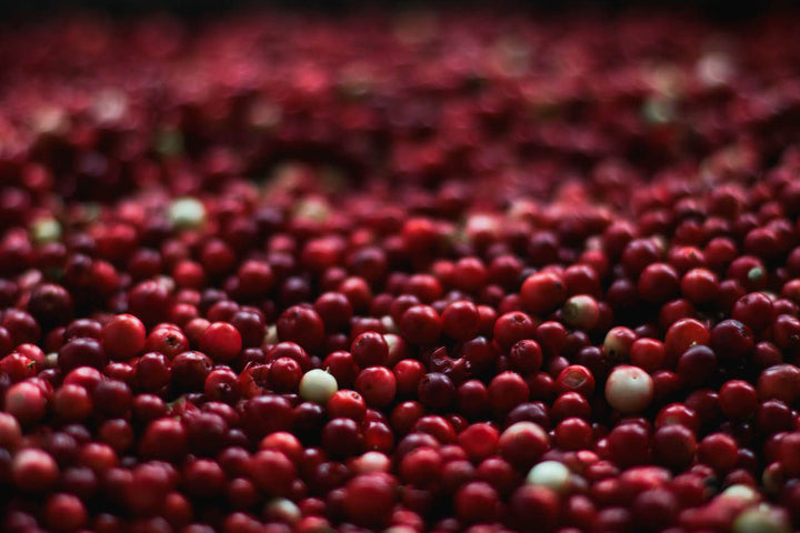 Health benefits hidden in your holiday cranberries!