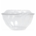 24 oz Salad To-Go Containers - Clear Plastic Disposable Salad Containers/Bowls with Airtight Lids