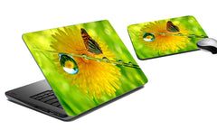 Laptop Skin and Mouse Pad