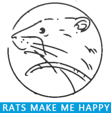 Rats Make Me Happy