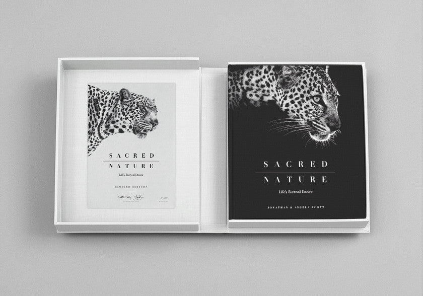 Pre-order Sacred Nature Limited Edition
