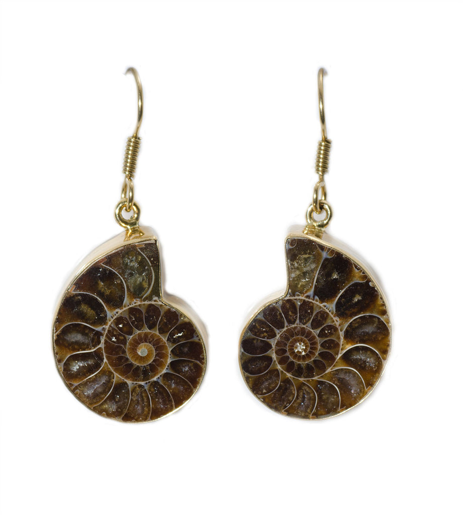 Charles Albert Alchemia Ammonite Gemstone Earrings