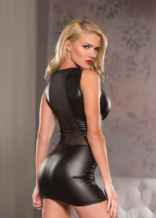Wetlook & Mesh Mini Dress (17-3502)