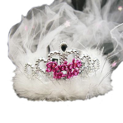 Flashing Tiara with Veil
