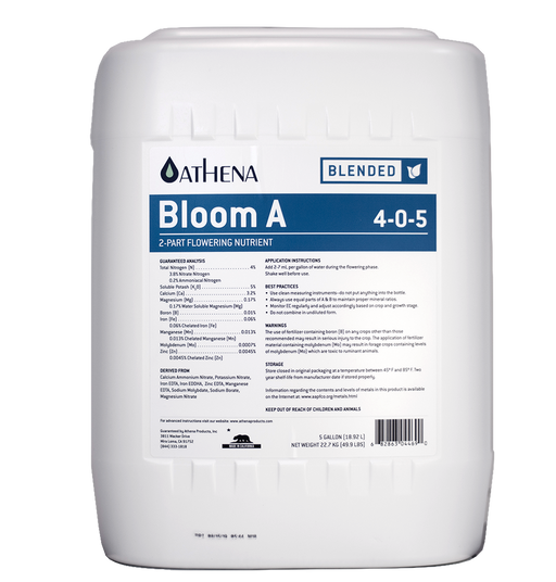 Athena Bloom A 1G