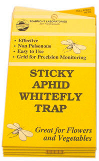 White Fly Traps, 5 pack