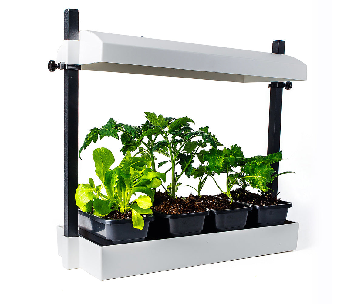 Sunblaster Micro LED Grow Light Garden, White