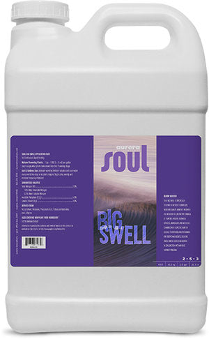 Aurora Innovations Soul Big Swell