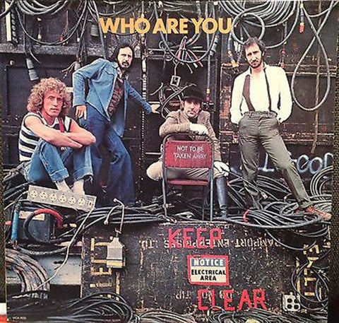 "THE WHO - ""Who Are You"" vinyl album"