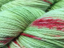 Yarn Carnival High Wire 3-Ply Fingering