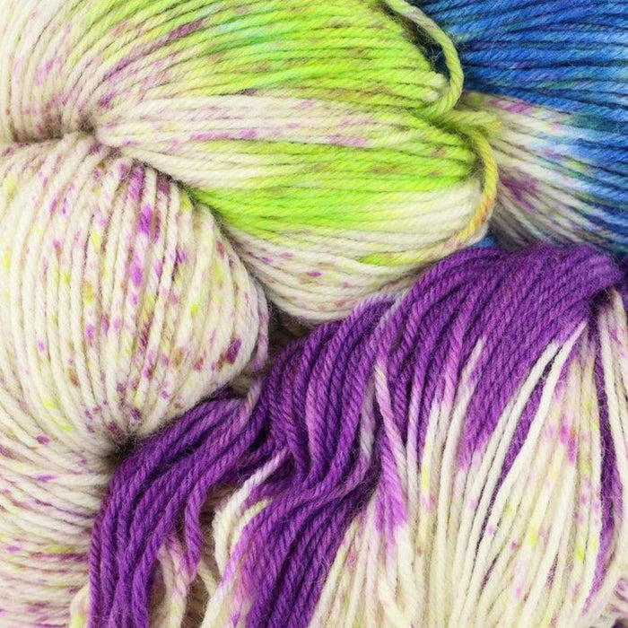 Huasco Sock Hand Painted by Araucania Yarns 1014 Valparaiso Yarn Araucania Yarns The Wool Queen 841275137479