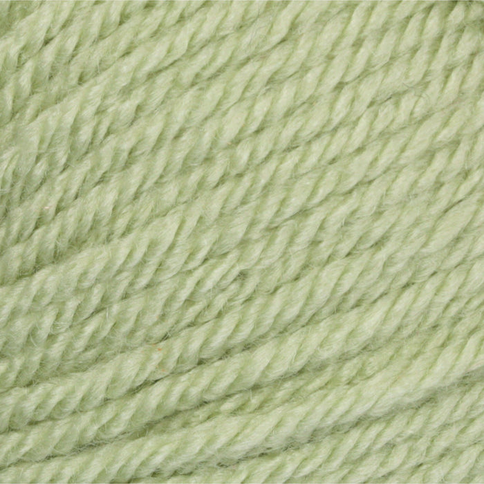 Patons Canadiana Cherished Green 10230 1 Yarn Patons The Wool Queen 057355334458