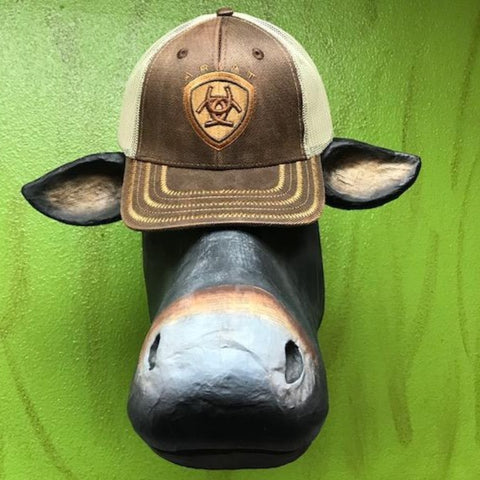 Ariat Cap brown leather logo cap