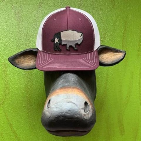 Red Dirt Hat Co., Texas Buffalo, Men's Logo Cap