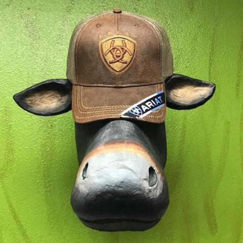 Ariat, Men's Logo Cap